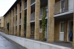 Vibeke - Eksempel på arkitekturen i Tingbjerg